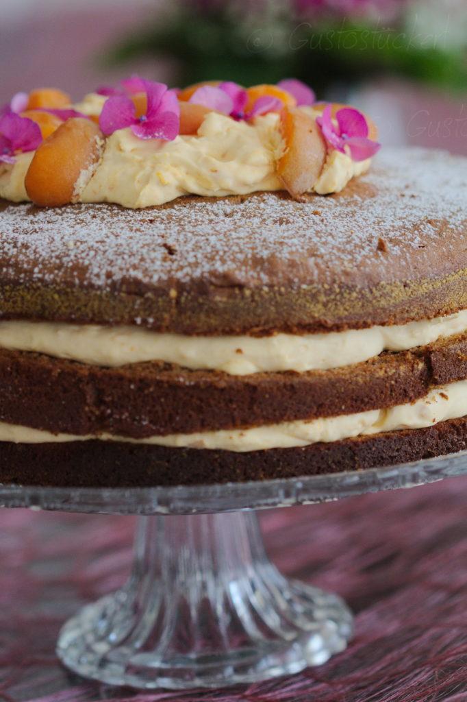 Marillenmousse Torte